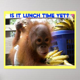 Poster Déjeuner de bébés d'orang-outan
