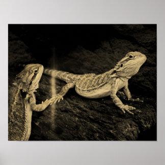 Poster Deux lézards
