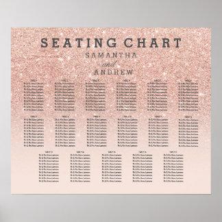 Poster Diagramme rose 17 d'allocation des places d'ombre