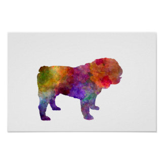 Poster English Bulldog in watercolor