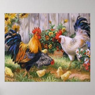 Poster Famille de poulet