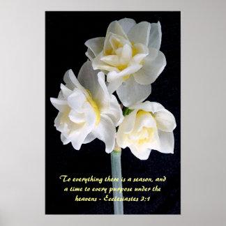Poster Fleur de Jonquil - 3:1 d'Ecclesiastes