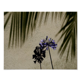 Poster Fleur et ombres pourpres