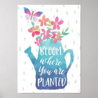 Poster Fleur où vous êtes plantés