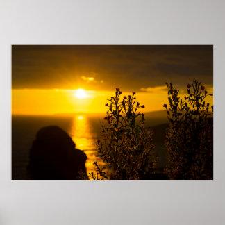 Poster fleurs atlantiques sauvages de coucher du soleil