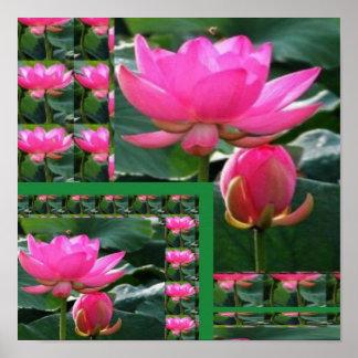 Poster Floralies de LOTUS