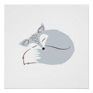 Poster Fox gris de région boisée