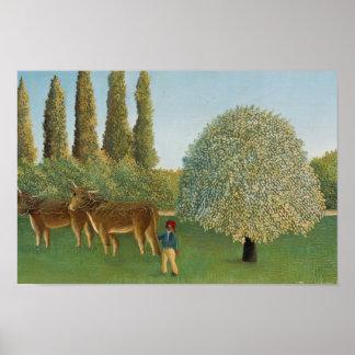 Poster Henri Rousseau - pré