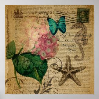 Poster Hortensia floral de coquillage botanique français