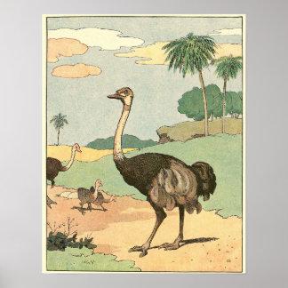 Poster Illustration de livre d'histoire d'autruche