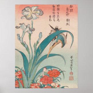 Poster Iris et roses sauvages GalleryHD de martin-pêcheur