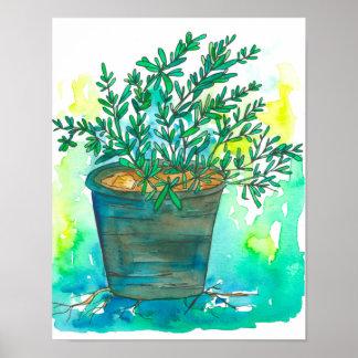 Poster Jardin de herbes aromatiques Rosemary