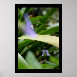 Poster Je vous ai vus affiche florale de photographie de