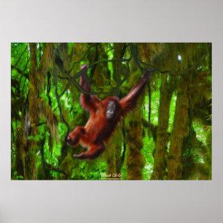 Poster Jeune orang-outan en affiche d'art de faune de