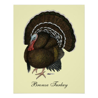 Poster La Turquie Tom en bronze