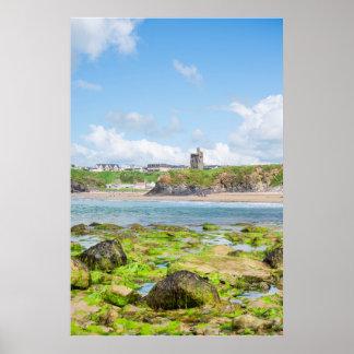 Poster l'algue a couvert des roches de château et de