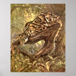 Poster Léopard opacifié par le cygne de la CE, animaux