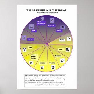 Poster Les 12 sens et le zodiaque