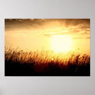 Poster Lever de soleil de prairie