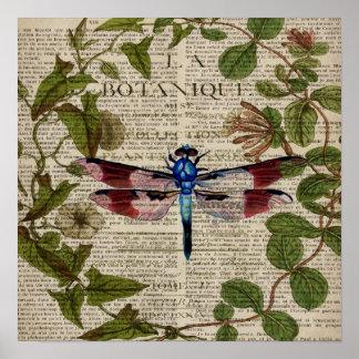 Poster libellule vintage moderne de feuille botanique