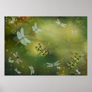 Poster Libellules et illustration de Lillies de l'eau