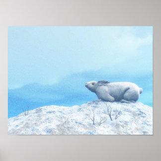 Poster Lièvres arctiques, lepus artique, ou lapin polaire