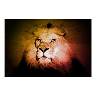 Poster Lion d'art de bruit - photographie d'animal