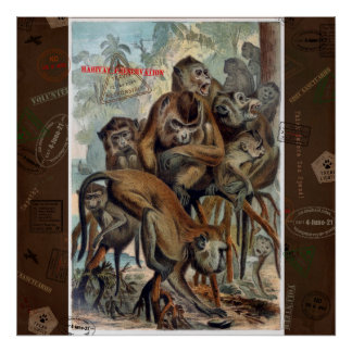 Poster Macaques pour le voyage responsable