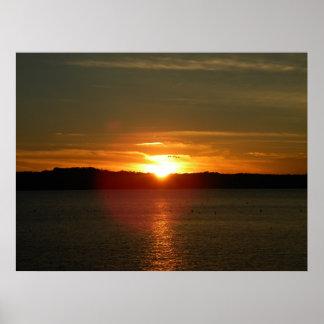 Poster Migration de coucher du soleil