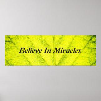 Poster Miracles naturels