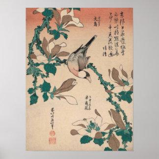Poster Moineau de Hokusai Java sur la magnolia GalleryHD