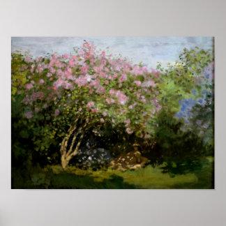 Poster Monet - lilas au soleil
