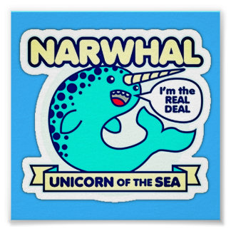 Poster Narwhal