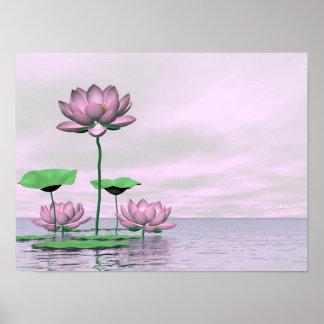 Poster Nénuphars et fleurs de lotus roses - 3D rendent