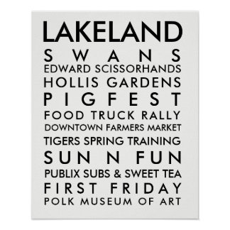 Poster Noir de l'histoire 16x20 de la Région des lacs
