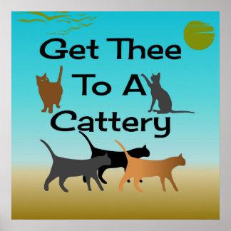 Poster Obtenez Thee à une affiche de pension pour chats