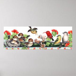 Poster Oiseaux hawaïens de forêt tropicale