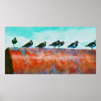 Poster Oiseaux sur un tuyau
