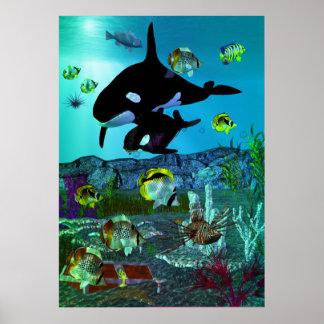 Poster ORQUE d'aquarium de l'exploration 3D