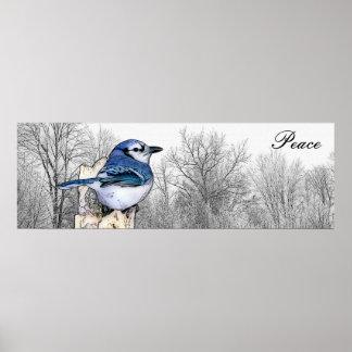 Poster Paix de forêt de geai bleu