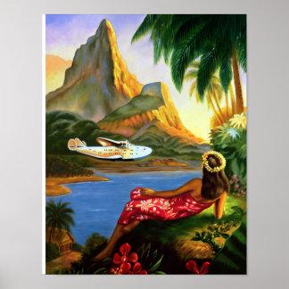 Poster Palmier hawaïen tropical vintage d'avion de mer