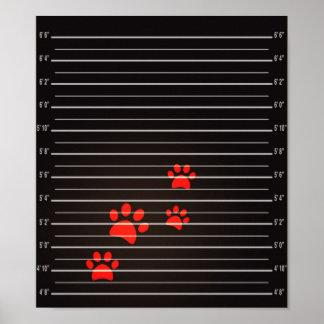 Poster Papier d'affiche coupable de valeur de chats (mat)