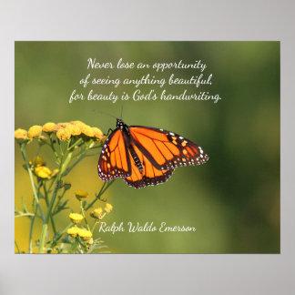 Poster Papillon de monarque