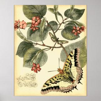 Poster Papillon et libellule avec les fleurs rouges