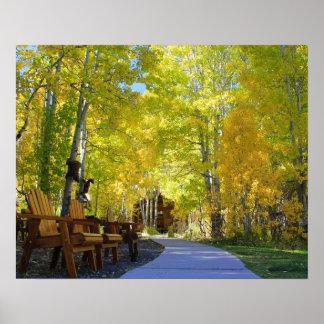 """Poster """"Passage couvert d'Aspen"""", vue au sol, automne"""
