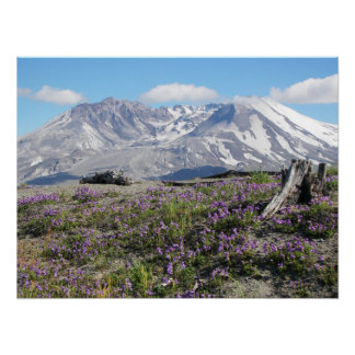 Poster Paysage de ressort du Mont Saint Helens