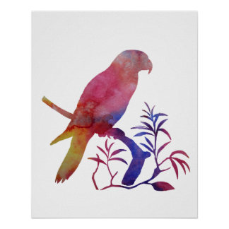 Poster Perroquet