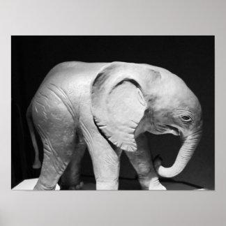 Poster Photo noire et blanche d'éléphant