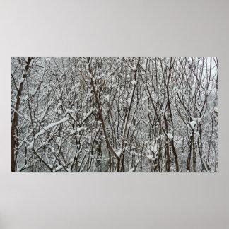 Poster Photographie couverte par neige d'abrégé sur hiver