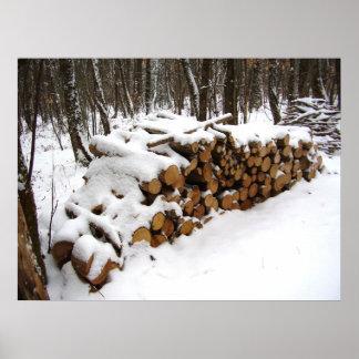 Poster Pile de rondin dans l'affiche en bois